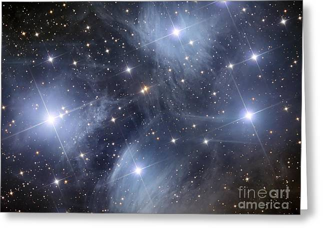 Twinkle Greeting Cards - The Pleiades, An Open Cluster Of Stars Greeting Card by Reinhold Wittich