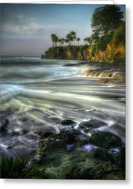 Sean Greeting Cards - The Point at Shaws Cove Greeting Card by Sean Foster