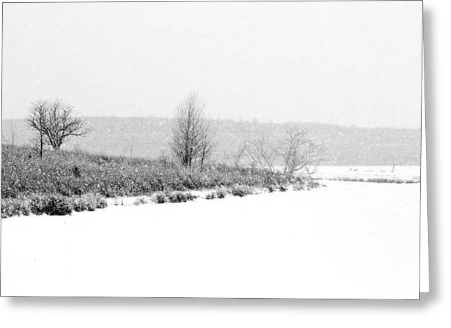 Park Scene Greeting Cards - The Point in Winter Greeting Card by Nikolyn McDonald