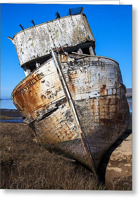 Ship-wreck Greeting Cards - The Point Reyes Greeting Card by Garry Gay