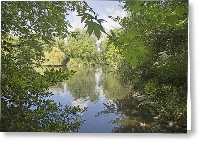 The Pond -- Ireland Greeting Card by Betsy C Knapp
