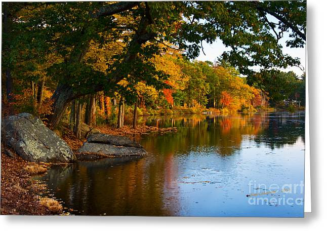 Red And Gold Leaves Greeting Cards - The Pond At Fisk Mill Greeting Card by Jim  Calarese