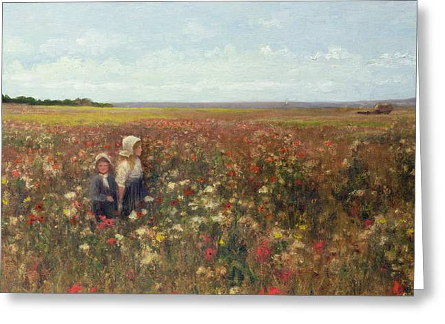 Kate Greeting Cards - The Poppyfield Greeting Card by Kate Colls