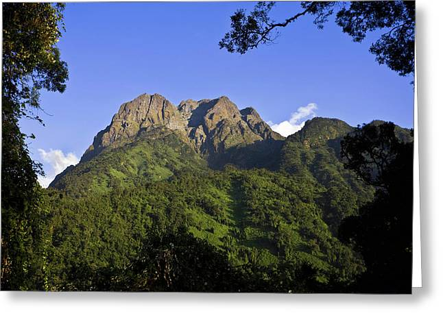 The Portal Peaks In The Rwenzori, Uganda Greeting Card by Martin Zwick