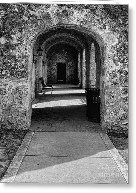 In Focus Greeting Cards - The Portico Greeting Card by John Kain