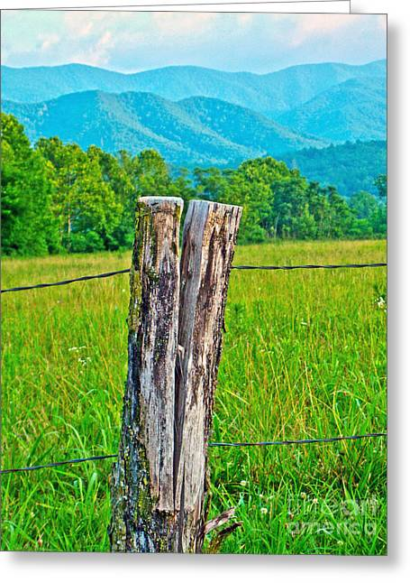 Old Fence Post Greeting Cards - The Post Greeting Card by M J Glisson