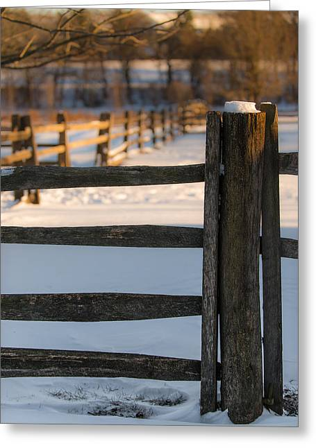 Fence Row Greeting Cards - The Post Greeting Card by Scott Hafer