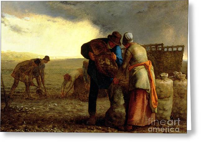 Apron Greeting Cards - The Potato Harvest Greeting Card by Jean Francois Millet