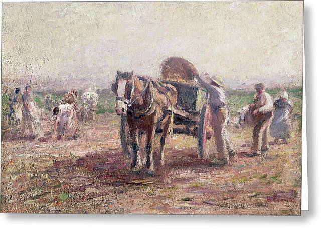 The Potato Pickers Greeting Card by Harry Fidler