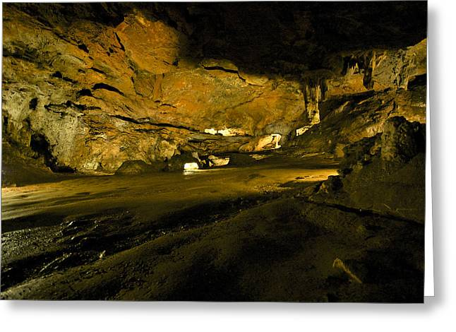 The Prehistoric Cavern Greeting Card by Gina Dsgn