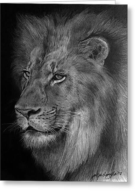 Hyper-realism Greeting Cards - The Pride Drawing Greeting Card by Janet Pancho Gupta