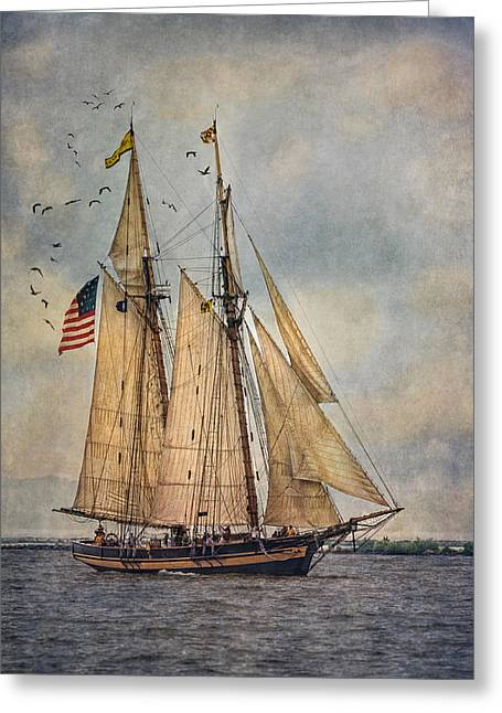 Pirate Ships Greeting Cards - The Pride Of Baltimore II Greeting Card by Dale Kincaid