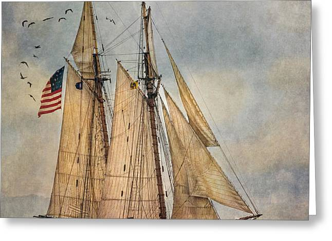 The Pride Of Baltimore II Greeting Card by Dale Kincaid
