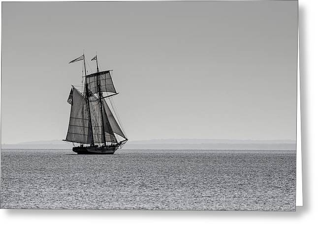 Wooden Ship Greeting Cards - The Pride of Baltimore Greeting Card by Keith R Crowley