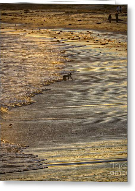 Beach In Santa Barbara Greeting Cards - The Prince Of The Tides Greeting Card by Mitch Shindelbower