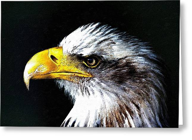 Patriots Greeting Cards - The Proud Eagle Greeting Card by Florian Rodarte