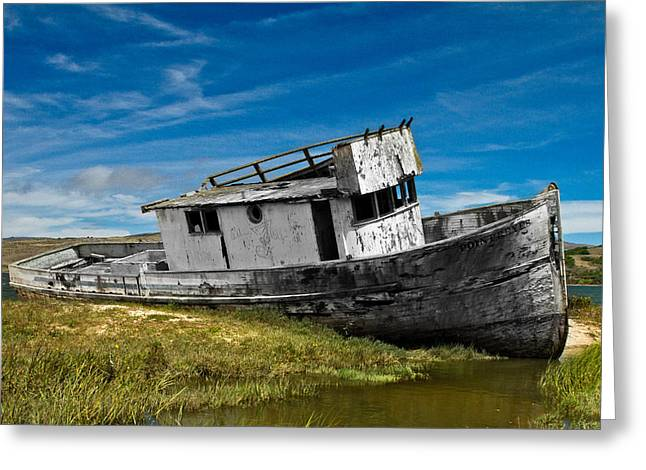 Bill Gallagher Greeting Cards - The Pt. Reyes Muted Greeting Card by Bill Gallagher