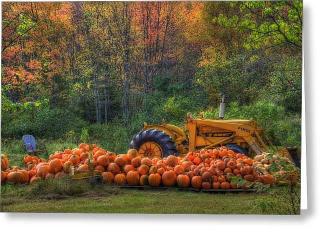 Autumn Scenes Greeting Cards - The Pumpkin Patch Greeting Card by Joann Vitali