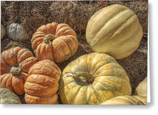 Jack O Lanterns Jackolantern Greeting Cards - The Pumpkins of Autumn Greeting Card by Jason Politte