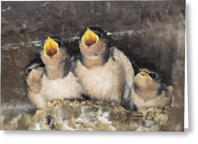Swallow Nestlings Greeting Cards - The Quads Greeting Card by Helen Ellis