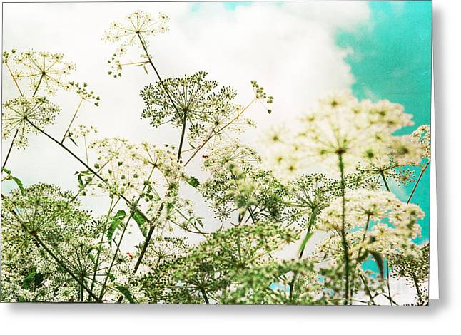 Queen Annes Lace Greeting Cards - The Queen of Lace Greeting Card by Kim Fearheiley