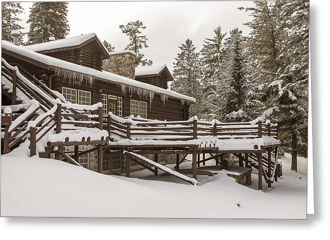 Pinus Resinosa Greeting Cards - The Quiet of Winter Greeting Card by Tim Grams
