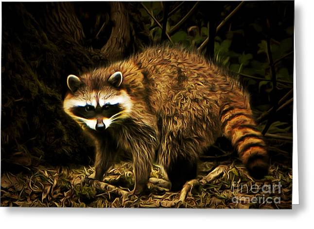 Raccoon Digital Art Greeting Cards - The Raccoon 20150211brun Greeting Card by Wingsdomain Art and Photography