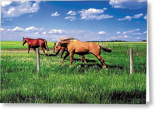 Ranch Paintings Greeting Cards - The Race Greeting Card by Terry Reynoldson