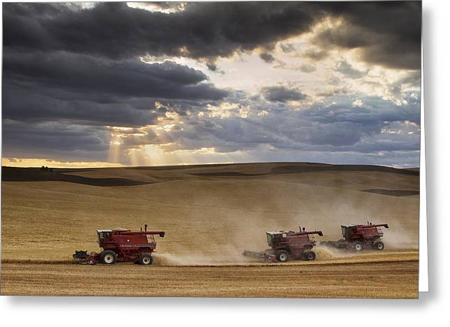 Harvesting Greeting Cards - The Race to Finish Greeting Card by Mark Kiver