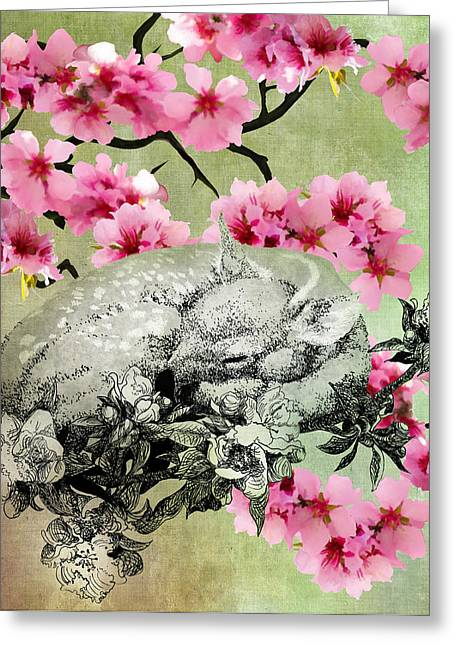 Fawn Mixed Media Greeting Cards - The Rain is Over And Flowers Appear on the Earth Greeting Card by Sarah Wathen