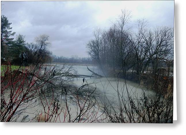 Flooding Digital Art Greeting Cards - The Rains Came Greeting Card by Barkley Simpson