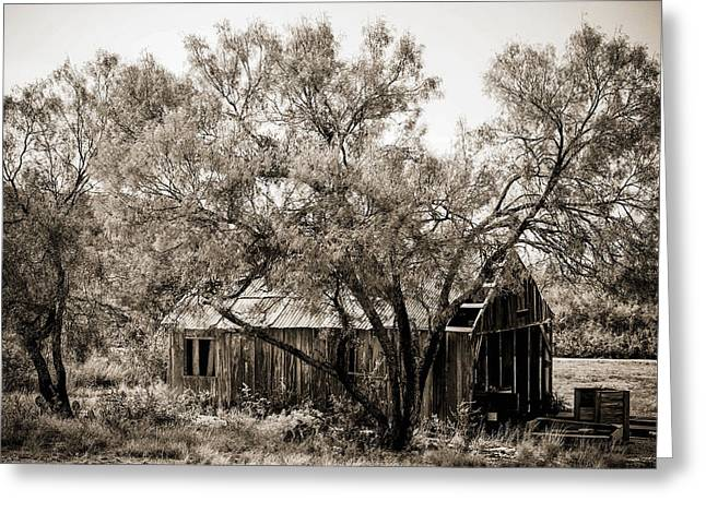 The Ranch  Greeting Card by Amber Kresge