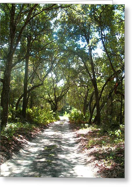 Sand Glass Greeting Cards - The Real Florida Greeting Card by Ginny Schmidt