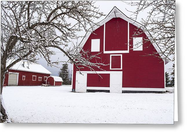 Daysray Photography Greeting Cards - The Red Barn Greeting Card by Fran Riley