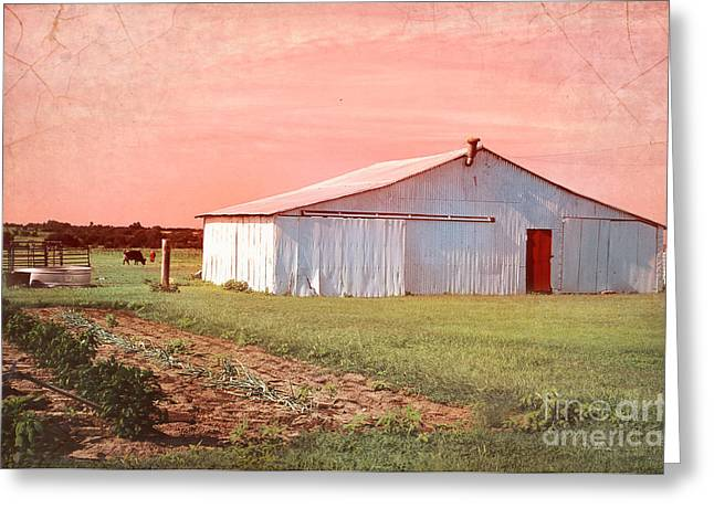 Barn Digital Art Greeting Cards - The Red Door Greeting Card by Betty LaRue