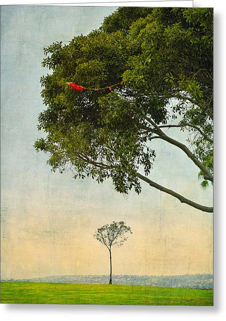 Kite Greeting Cards - The Red Kite Greeting Card by Marianne Campolongo