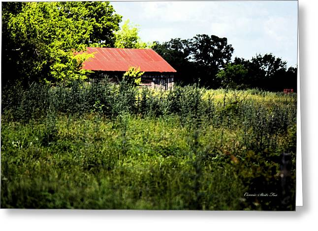 Shed Greeting Cards - The Red Roof Greeting Card by Connie Fox
