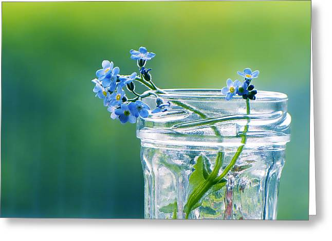 """forget Me Not"" Greeting Cards - The Requiem Greeting Card by Vesna Viden"