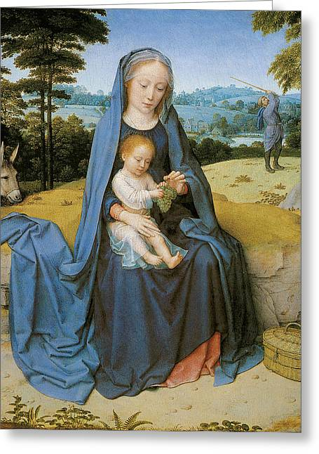 Baby Donkey Greeting Cards - The Rest on the flight Into Eqypt Greeting Card by Gerard David