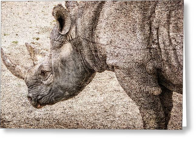 The Rhino Greeting Card by Ray Van Gundy
