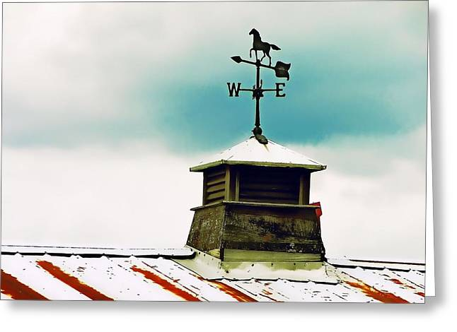 Best Sellers -  - Weathervane Greeting Cards - The Right Direction Greeting Card by JAMART Photography