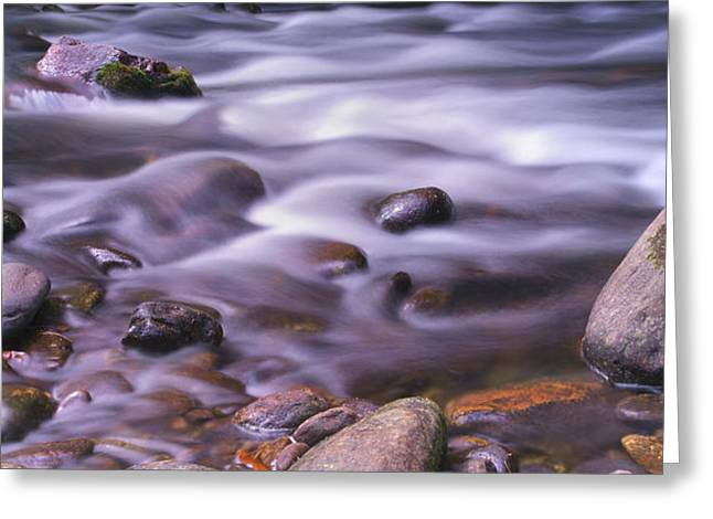 Flowing Stream Greeting Cards - The River Flows Greeting Card by Mike McGlothlen