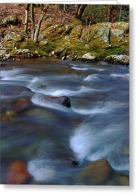 River Scenes Greeting Cards - The River Flows On Greeting Card by Michael Eingle