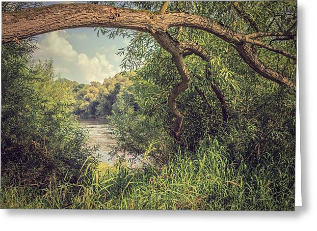 River View Photographs Greeting Cards - The River Severn at Buildwas Greeting Card by Amanda And Christopher Elwell