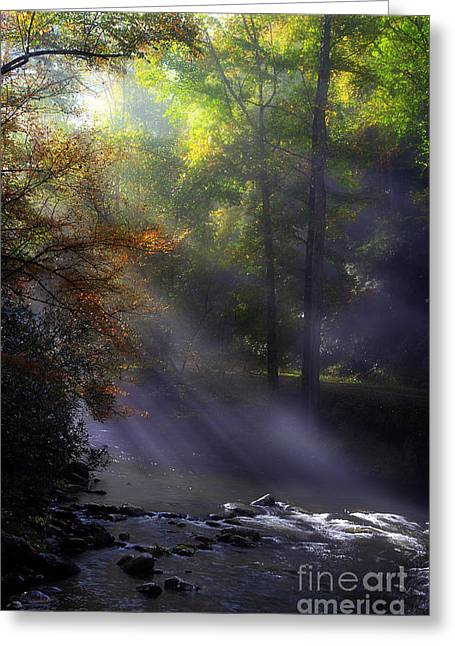 Fall River Scenes Greeting Cards - The Rivers Embrace Greeting Card by Michael Eingle