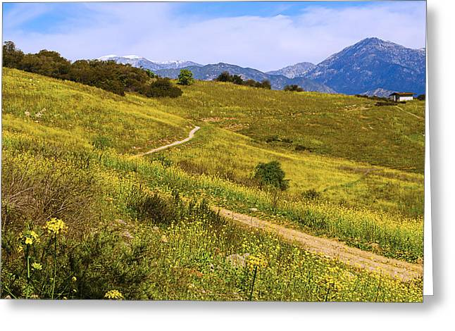Mountain Cabin Greeting Cards - The Road Home Greeting Card by Camille Lopez