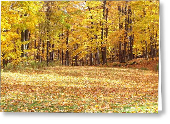 Fall Colors Pyrography Greeting Cards - The ROad Greeting Card by Jeff Lesher