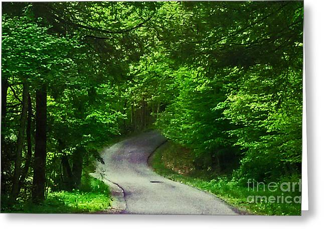 Take The High Road Greeting Cards - The Road Greeting Card by Katherine Williams