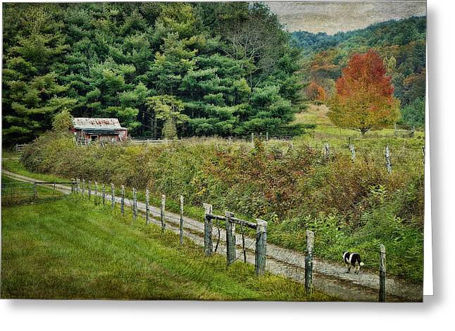 Autumn Prints Greeting Cards - The Road Leads Home Greeting Card by Kathy Jennings
