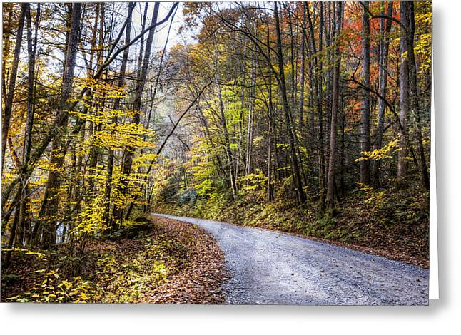 Rivers In The Fall Photographs Greeting Cards - The Road Less Traveled Greeting Card by Debra and Dave Vanderlaan